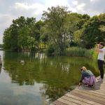 lac activité eau