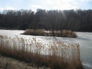 Пейзаж Совських ставів