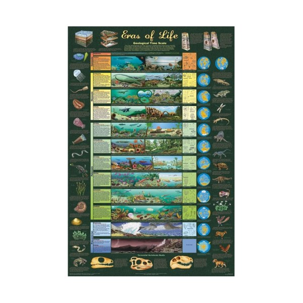 Eras Of Life Poster - Geological Time Scale