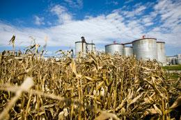 Corn ethanol production has long been supported by hefty government subsidies - but for how much longer? Patrick Fallon / Bloomberg / Getty Image