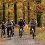 Mountain biking through the forest