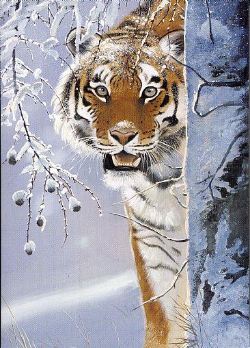Amur Tiger  Painting Art by Pollyanna Pickering