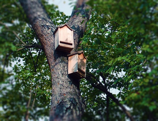 Bat houses help to attract the insect-eating mammals to your yard. Plans can be found online to DIY.
