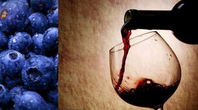 Blueberry Wine Pairing to Benefit The Arc Nature Coast 4/18