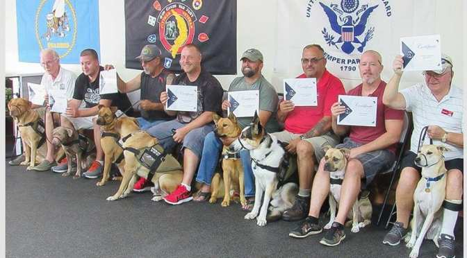 Helping Veterans and Homeless Dogs