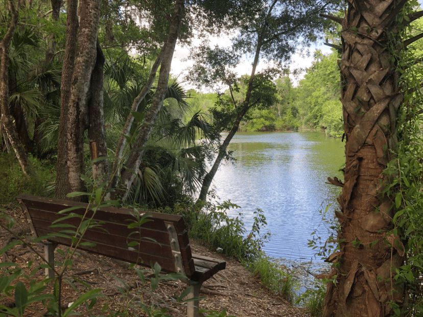 Bench with pond view on Blue Run Trail