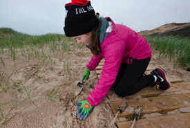 Conservation Volunteer Kali planting marram grass plugs (Photo by Sean Landsman)