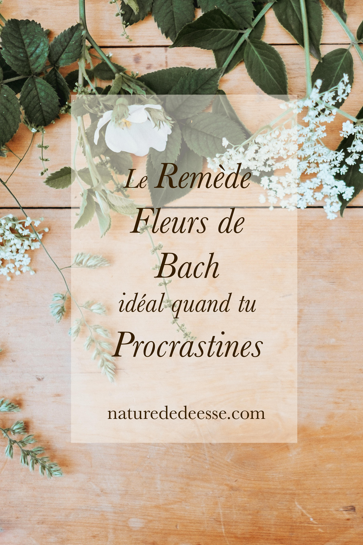 Meilleur mélange Fleurs de Bach si tu procrastines
