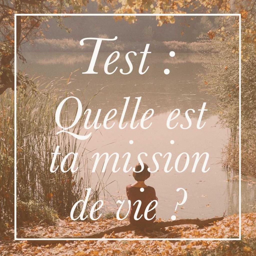 Réalise ce test gratuit pour connaitre quelle est ta mission de vie