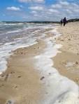 Mousse de mer sur les plages du littoral de la mer du Nord
