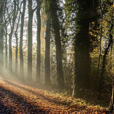En hiver le soleil rasant nous offre de superbes spectacles . Des moments rares dont il faut profiter.