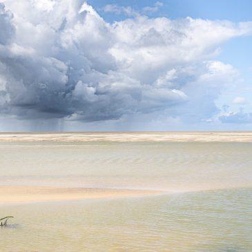 """Le festival nature de la Baie de Somme est annulé mais vous pouvez voir sur leur site le best off des photos du concours """"Mon plus beau coin nature des Hauts de France"""""""