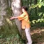 la voie des arbres - formation en vidéo
