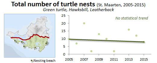 graph with number of sea turtle nests