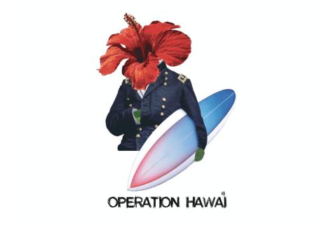 illustration-operation-hawai