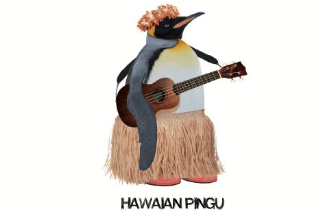 Hawaian Pingu