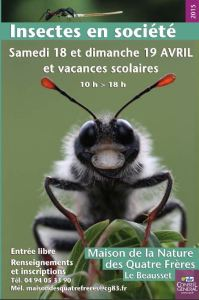 affiche hymenoptères