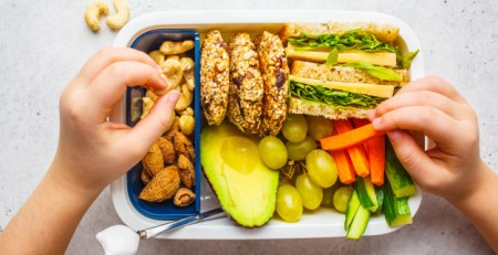 school-healthy-lunch-box-with-sandwich-cookies-fruits-avocado