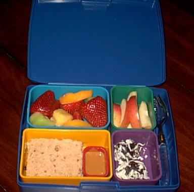 Payton's Laptop Lunchbox