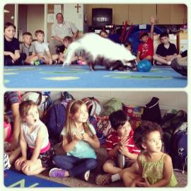 Let's Make a Stink About Skunks! was a huge HIT at Academy of the Sacred Heart's summer camp.