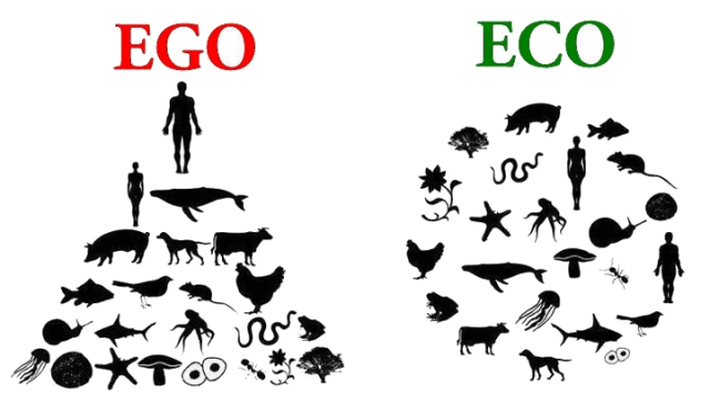Ego Vs. Eco
