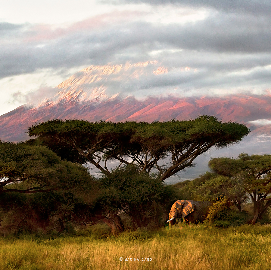 Kenya Landscape Photography