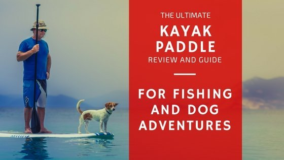 kayak paddle review