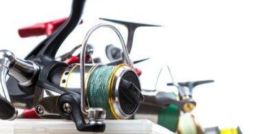 Best Spinning Reels