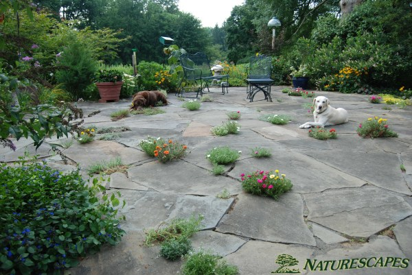 outdoor patios in chester county