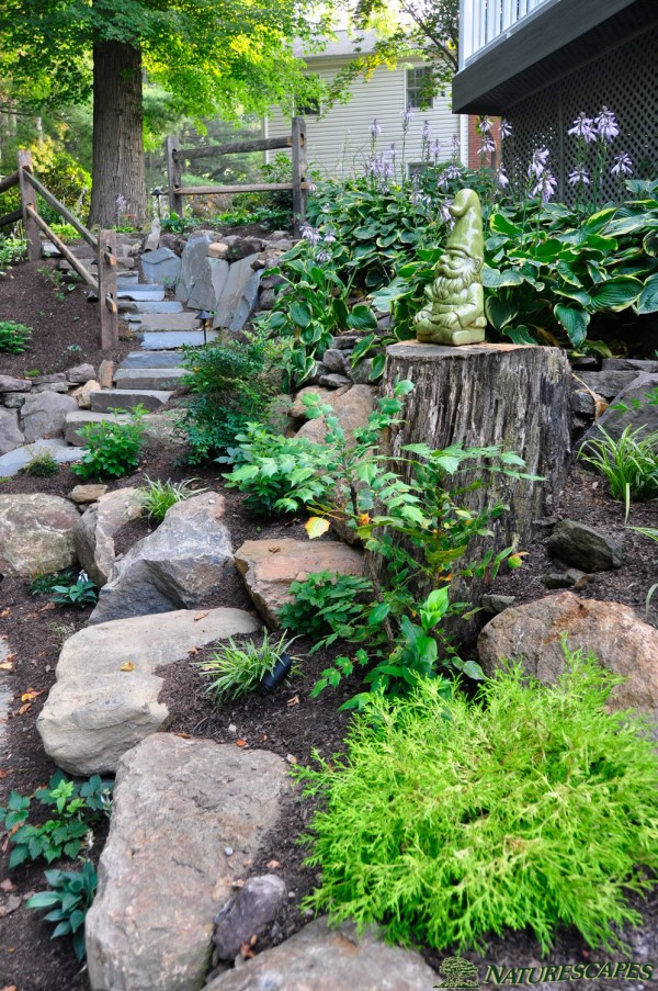 landscape design in broomall pa