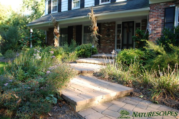 landscape design newtown square