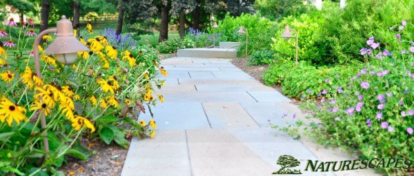 landscape design in newtown square