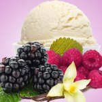 black raspberry vanilla fragrance oil
