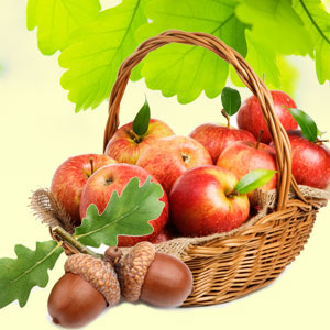 Best Apple Fragrance Oils Apples and Oak Fragrance Oil