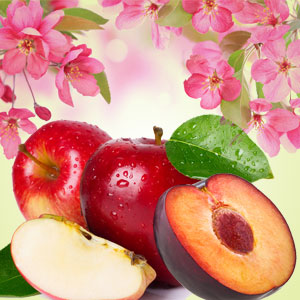 Best Apple Fragrance Oils Lavender Apple Fragrance Oil