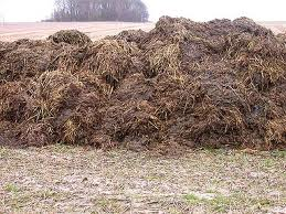 Well that's a big pile of cow sh......