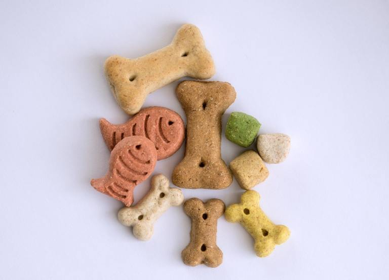 cbd dog treats recipe