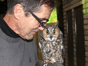 A man has his face close to a small owl that he is holding.