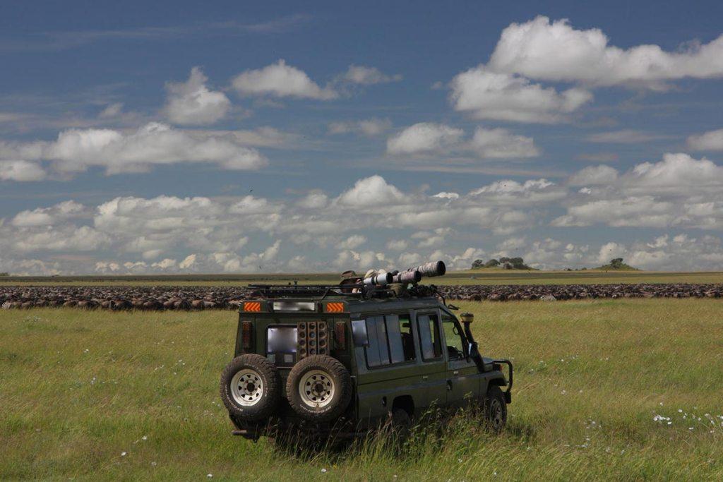 Wildlife Viewing in Uganda Secrets