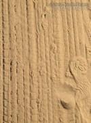 Thrasher Tracks