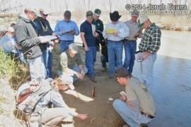 Gene Howe WMA Evaluation