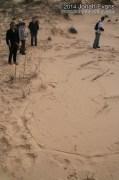 Badger Tracks (Obscure)