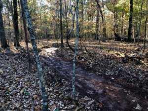 Charlotte NC Trail Builder
