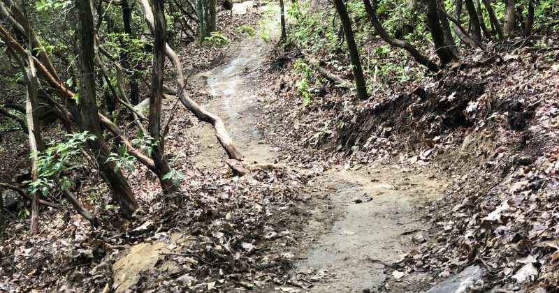 Silver Steps Hiking Trail