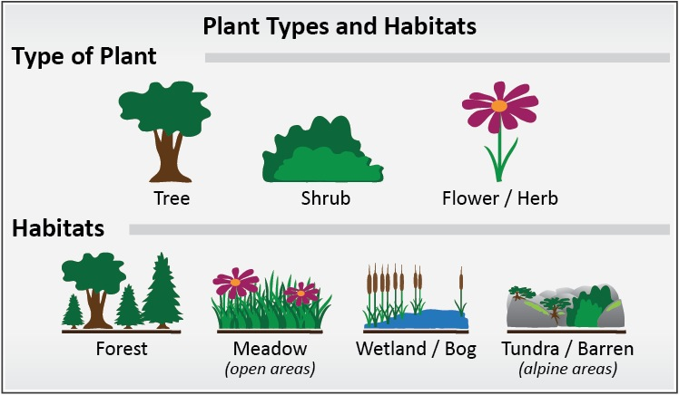 plant types and habitats