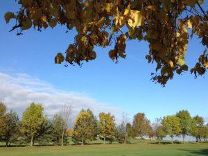 Der Sansenhof im Herbst