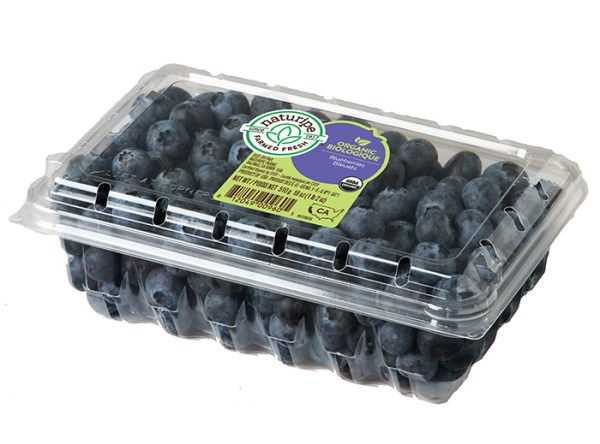 Blueberries A Super Fruit