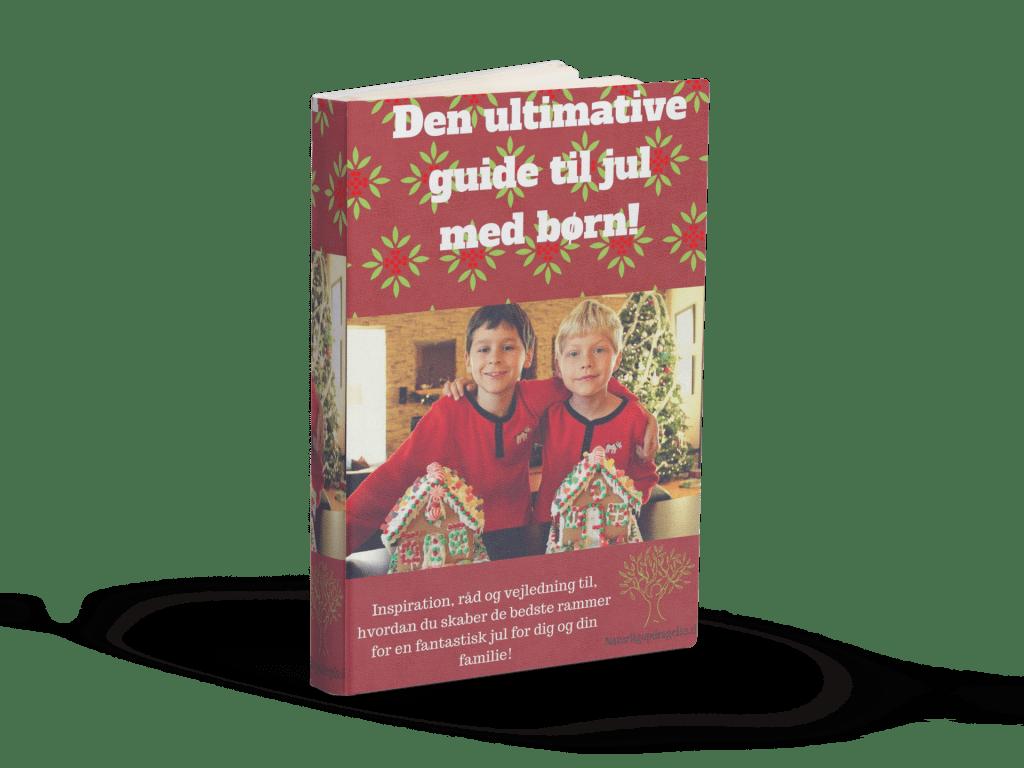 Den ultimative guide til jul med børn