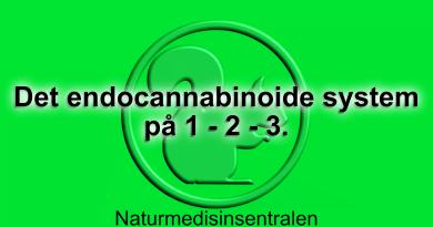 Det endocannabinoide system på 3 minutter
