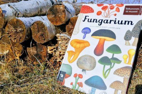 Bogen Fungarium foran brændestak